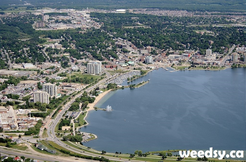 Barrie Dispensary Location
