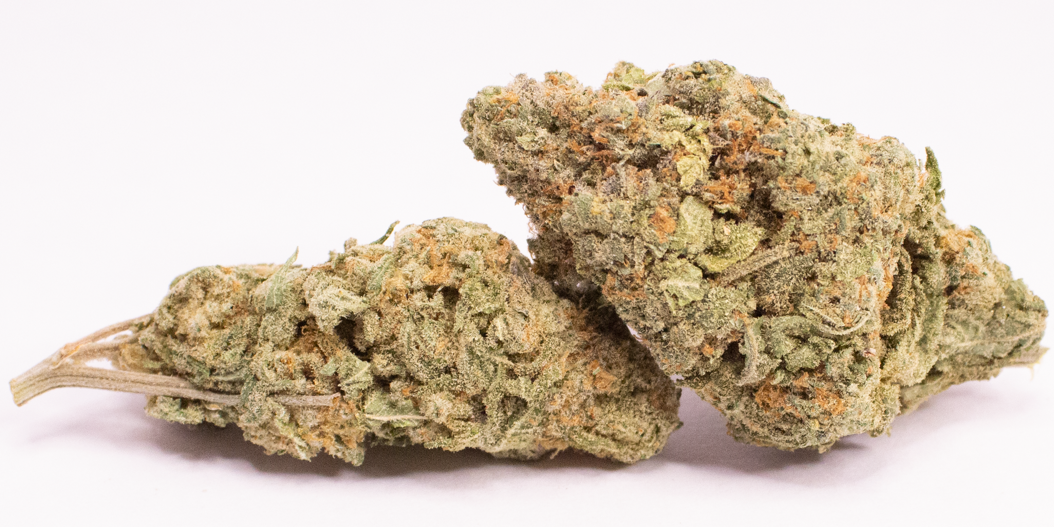 Online Dispensary Canada - Girl Scout Cookies Double
