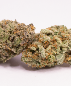 Online Dispensary Canada - Bubble Gum Double