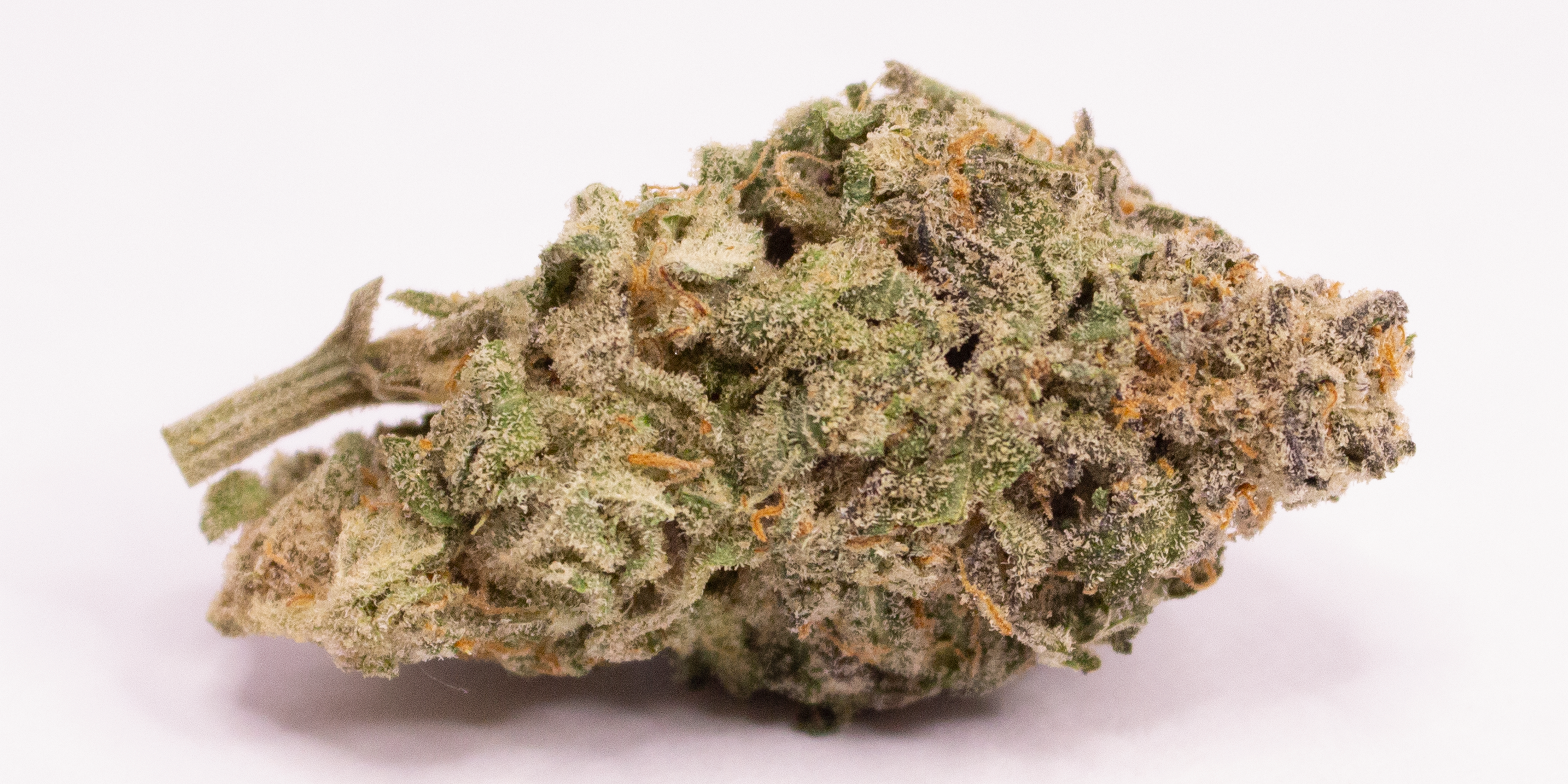 Online Dispensary Canada - Bubble Gum Single