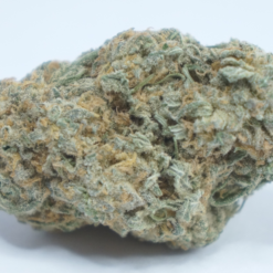 Online Dispensary Canada - Chocolope Single