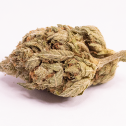 Online Dispensary Canada - Granddaddy Purple Single