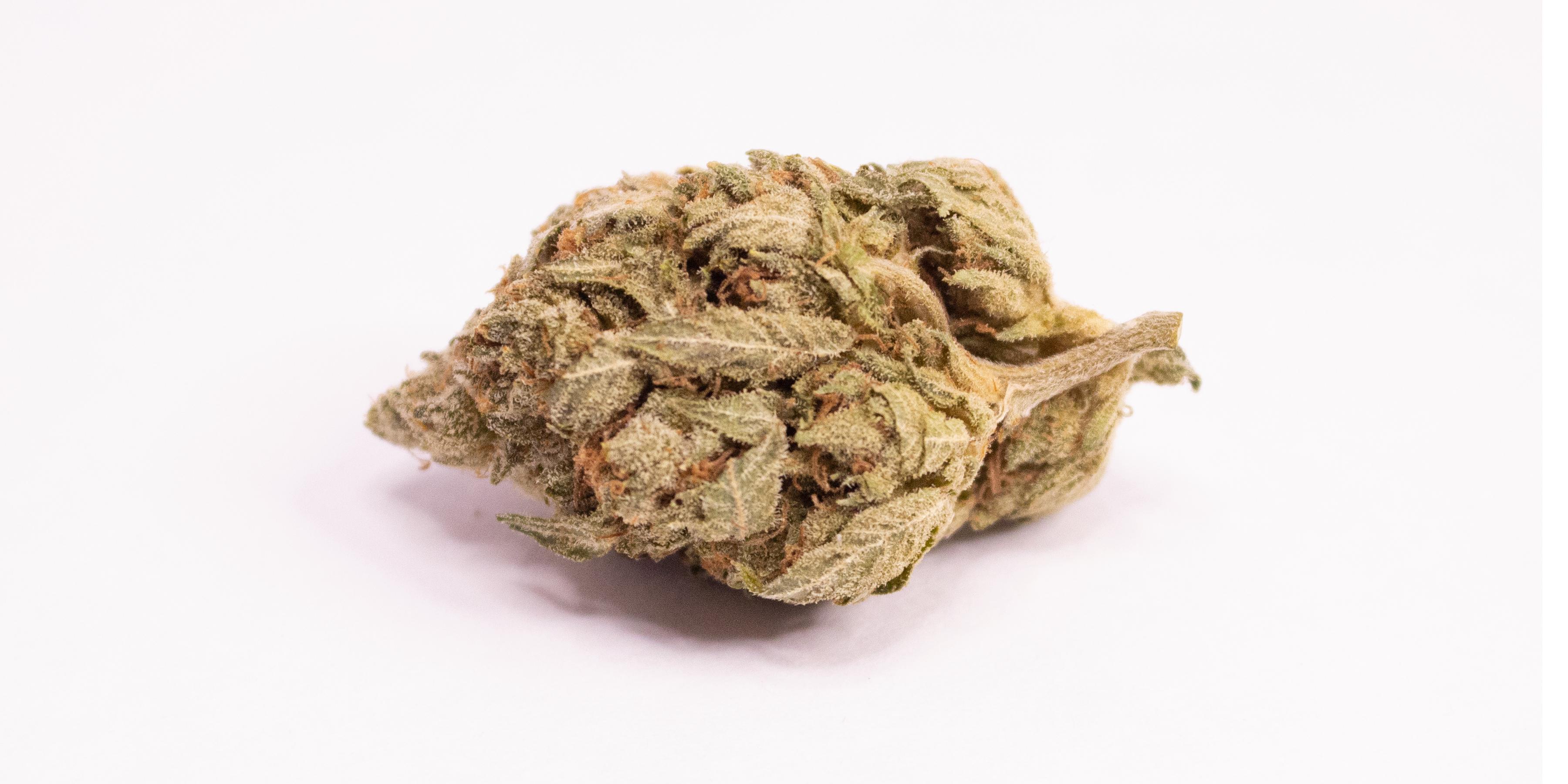 Online Dispensary Canada - Granddaddy Purple Single