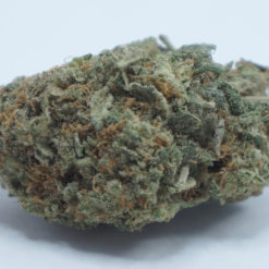 Online Dispensary Canada - Lindsay OG Master Kush Single