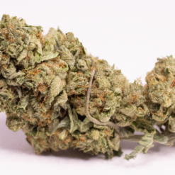 Online Dispensary Canada - MK Ultra Single
