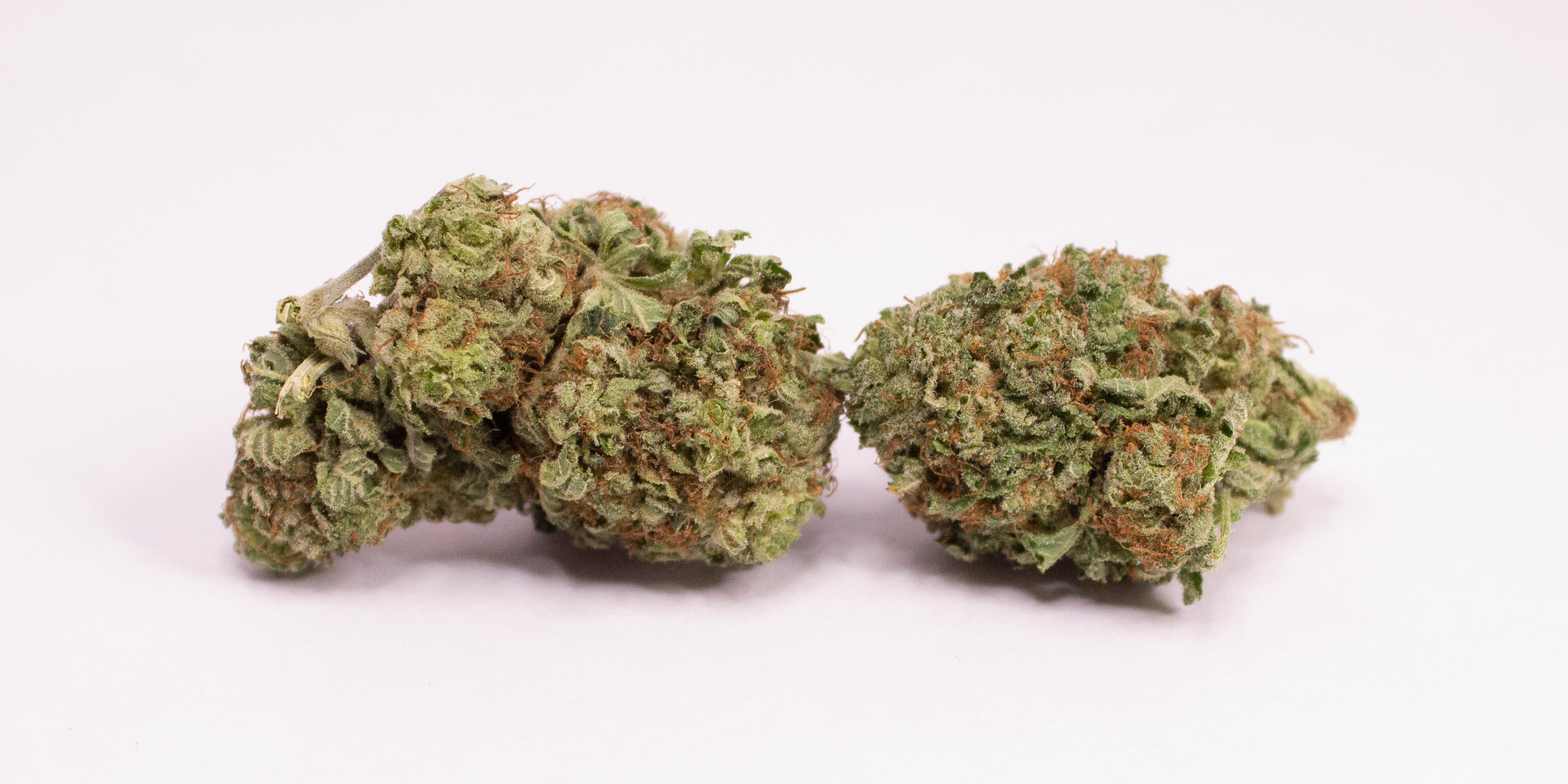 Online Dispensary Canada - Purple Kush Double