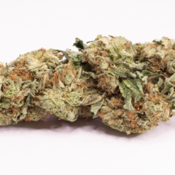 Online Dispensary Canada - Purple Kush Single