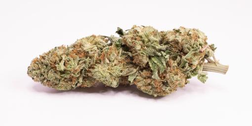 Online Dispensary Canada - Purple Kush Single