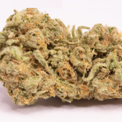 Online Dispensary Canada - Zombie OG Kush Single
