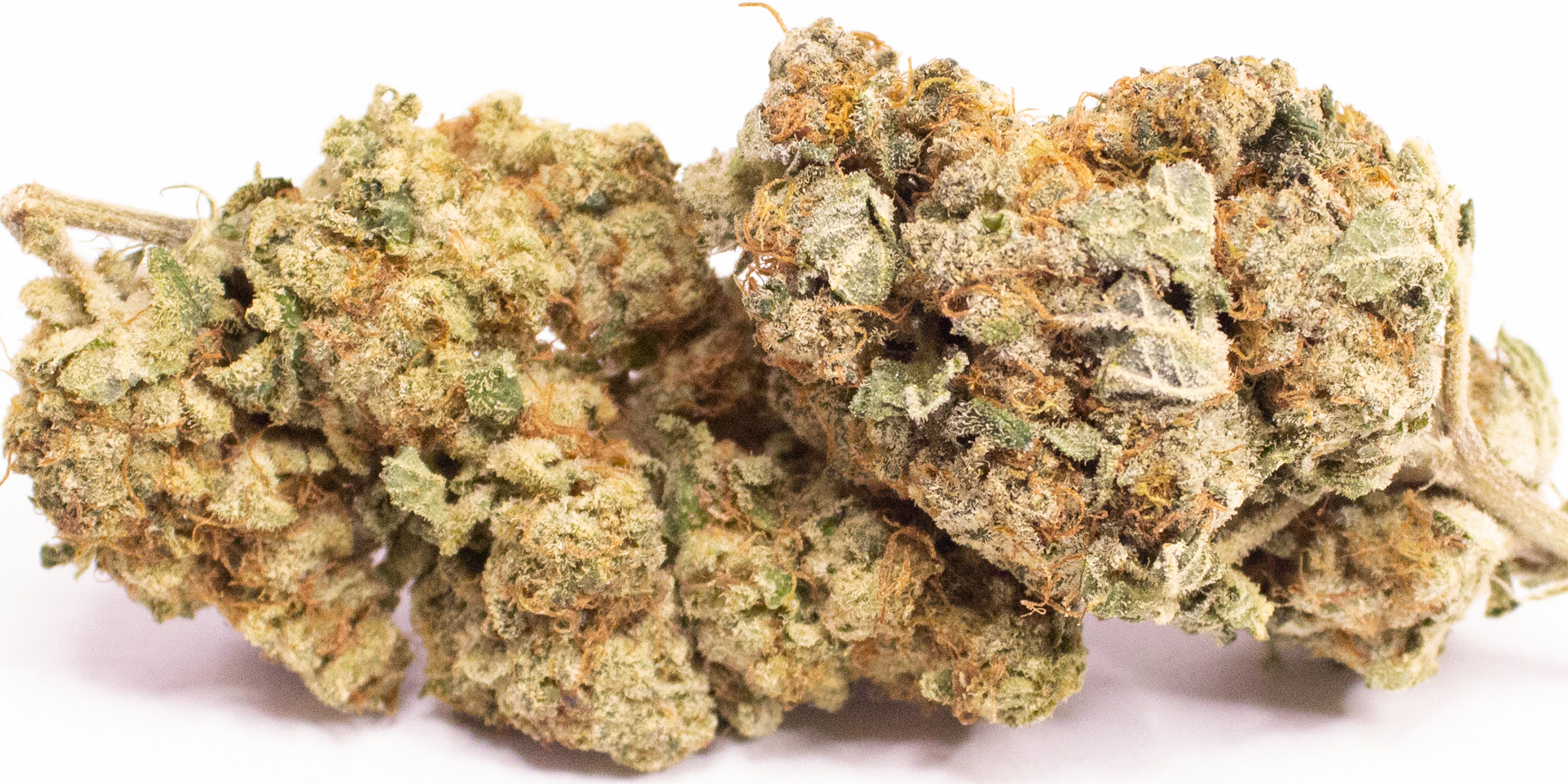 Online Dispensary Canada - Star Cookie Double