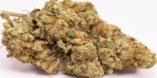 Online Dispensary Canada - Star Cookie Single