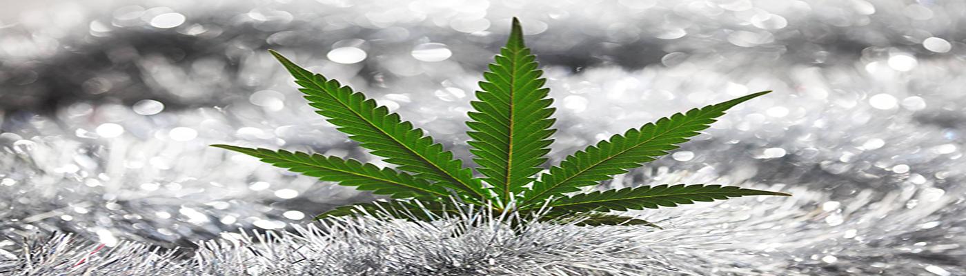 ice-leaf-weedsy-canada